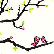Kirschblüte mit Turteltauben